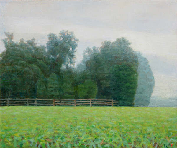 Six Acre Parcel Looking East Summer Afternoon Mist