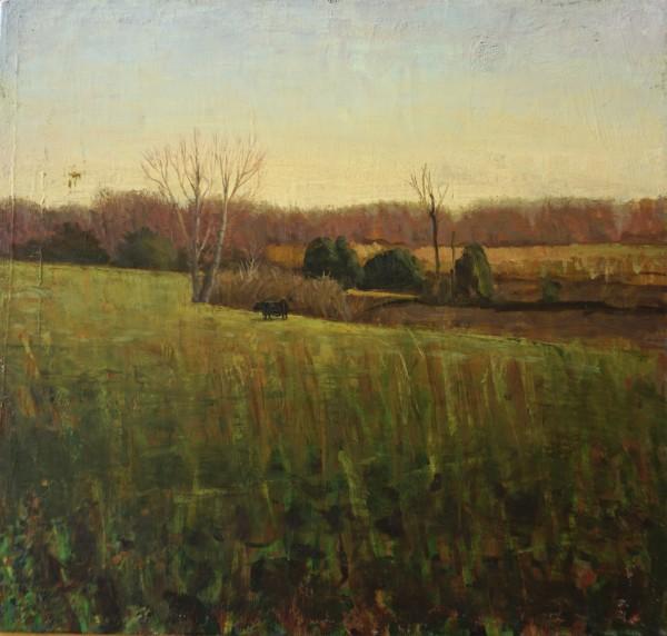 Black Cow, Winter Field