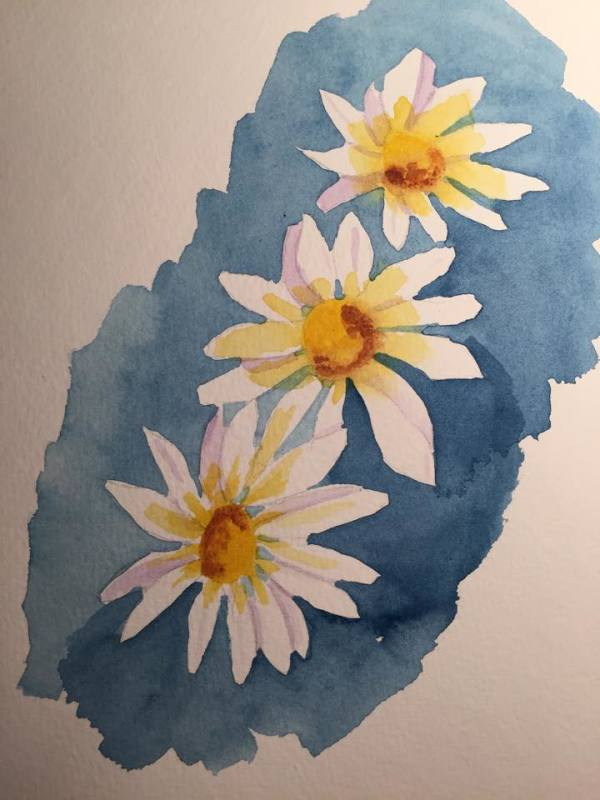 Daisies III by Patti Claassen