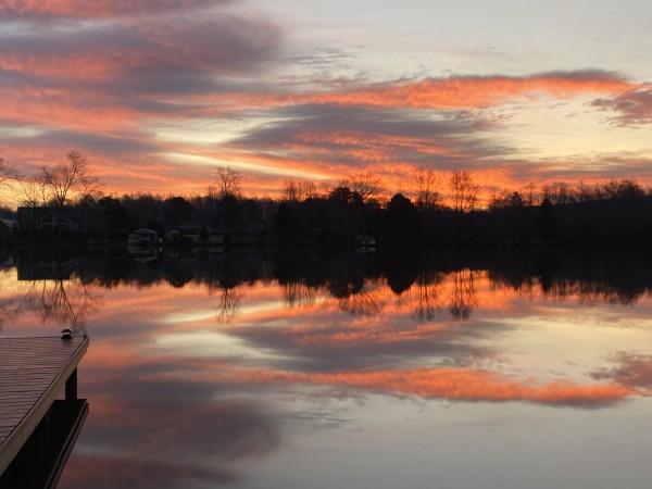 Oozing with Beauty Series© - Item #0376 by Lake Orange Sunrises LLC, Lisa Francescon, Owner
