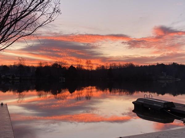 Oozing with Beauty Series© - Item #0378 by Lake Orange Sunrises LLC, Lisa Francescon, Owner