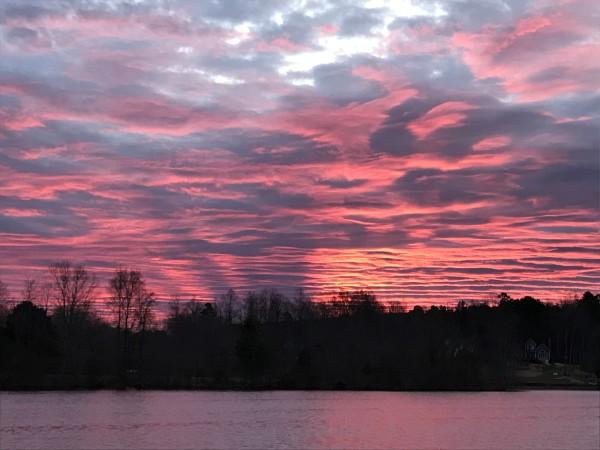 Wicked Pink Series© - Item #2529 by Lake Orange Sunrises LLC, Lisa Francescon, Owner