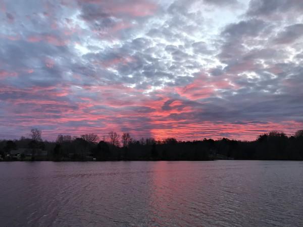 Wicked Pink Series© - Item #2533 by Lake Orange Sunrises LLC, Lisa Francescon, Owner