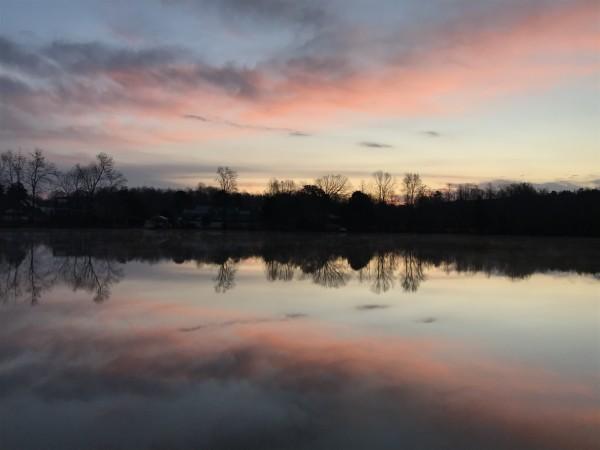 Chilly Pink Series© - Item #3043 by Lake Orange Sunrises LLC, Lisa Francescon, Owner