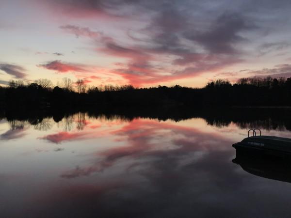 Pure Pink Joy Series© - Item #3222 by Lake Orange Sunrises LLC, Lisa Francescon, Owner