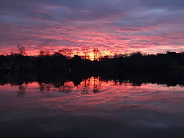 Purpley Haze Series© - Item #4263 (set 2) by Lake Orange Sunrises LLC, Lisa Francescon, Owner
