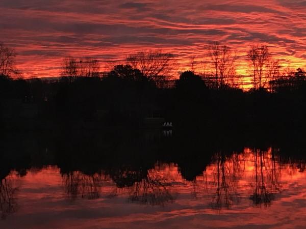Purpley Haze Series© - Item #4270 (set 1) by Lake Orange Sunrises LLC, Lisa Francescon, Owner