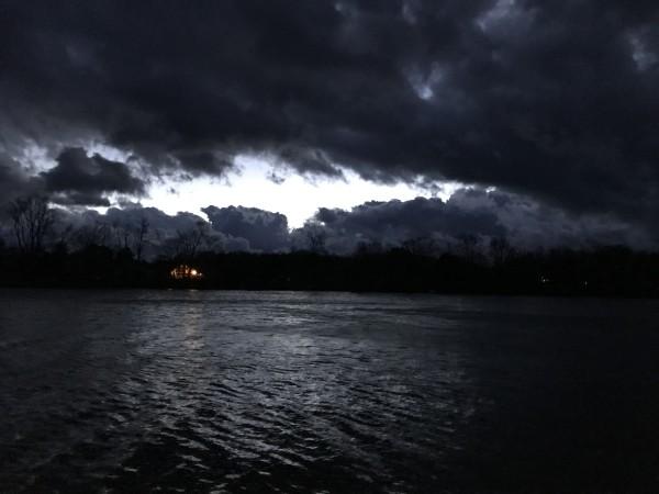 Dark Fury Series© - Item #4891 by Lake Orange Sunrises LLC, Lisa Francescon, Owner