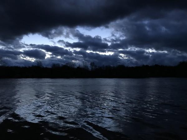 Dark Fury Series© - Item #4917 by Lake Orange Sunrises LLC, Lisa Francescon, Owner