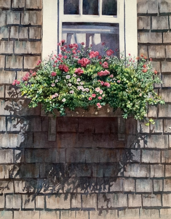 Window Box by Marla Greenfield