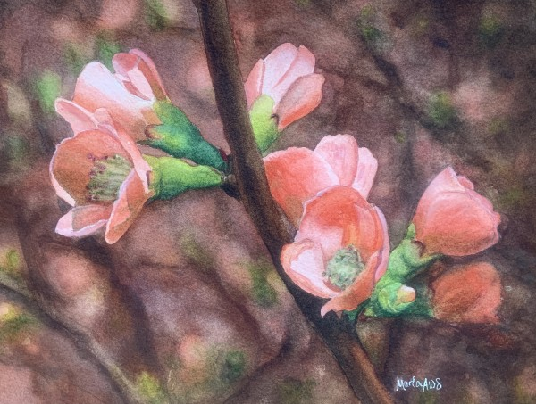 Blossoms by Marla Greenfield