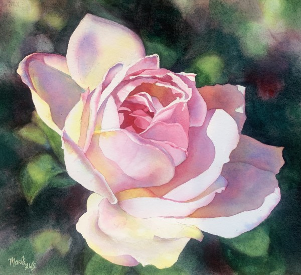 Rose Tinted View by Marla Greenfield