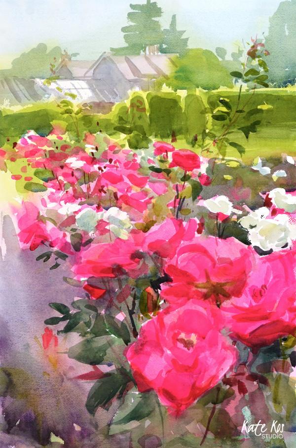 Farmleigh Roses I by Kate Kos