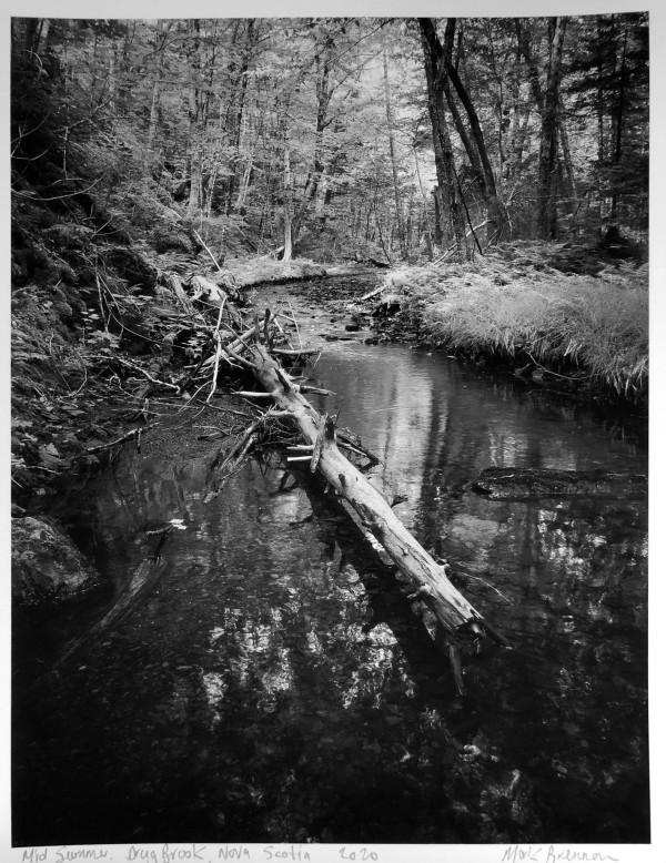 Mid Summer, Drug Brook, Nova Scotia by Mark Brennan