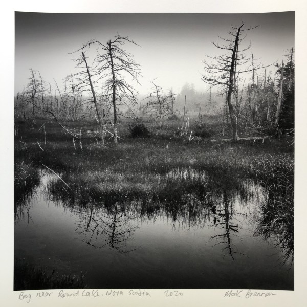 Bog Near Round Lake, Nova Scotia by Mark Brennan