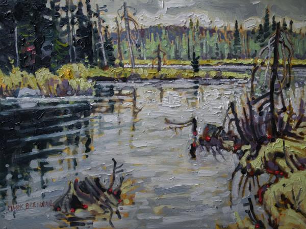 Wetland Edge, Dalhousie Mountain, Nova Scotia by Mark Brennan