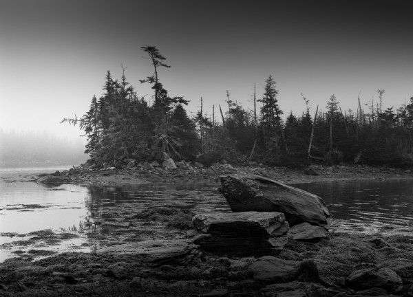 Low Tide Ecum Secum, Nova Scotia by Mark Brennan
