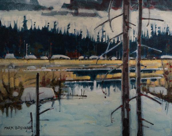 October, Moosehide Stream, Tobeatic Wilderness, Nova Scotia by Mark Brennan