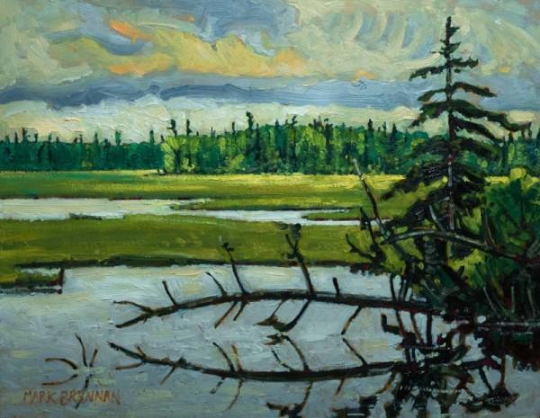 Salt Marshes At Port Latour, Nova Scotia by Mark Brennan