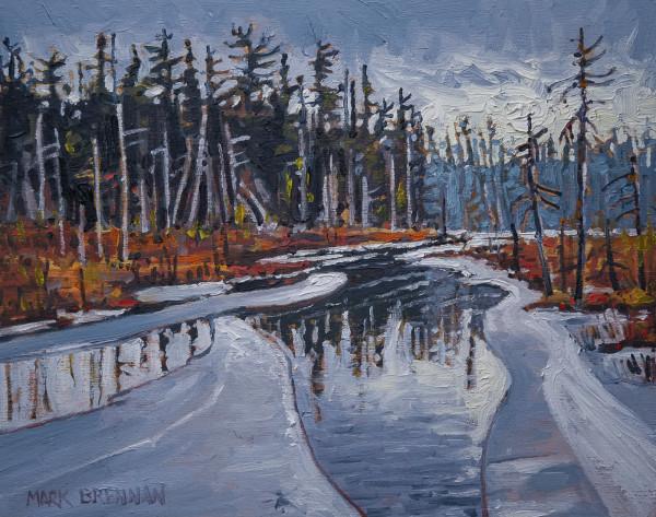 Wetland Breakup, Near Black Lake, Nova Scotia by Mark Brennan