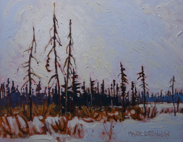 Winter Day, Upper Stewiacke River, NS by Mark Brennan