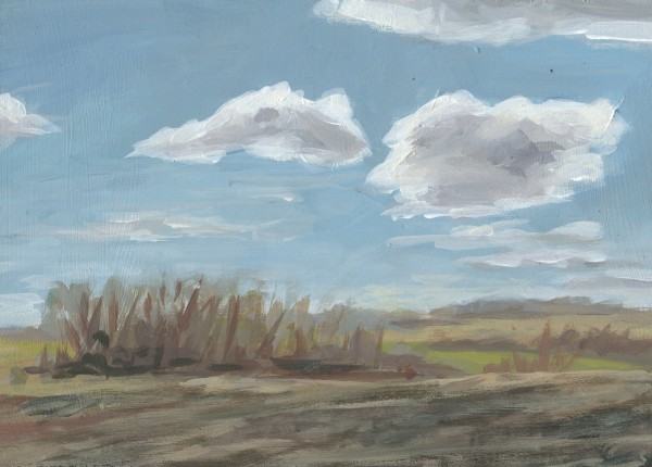 Spring Fields II by Carrie Arnold
