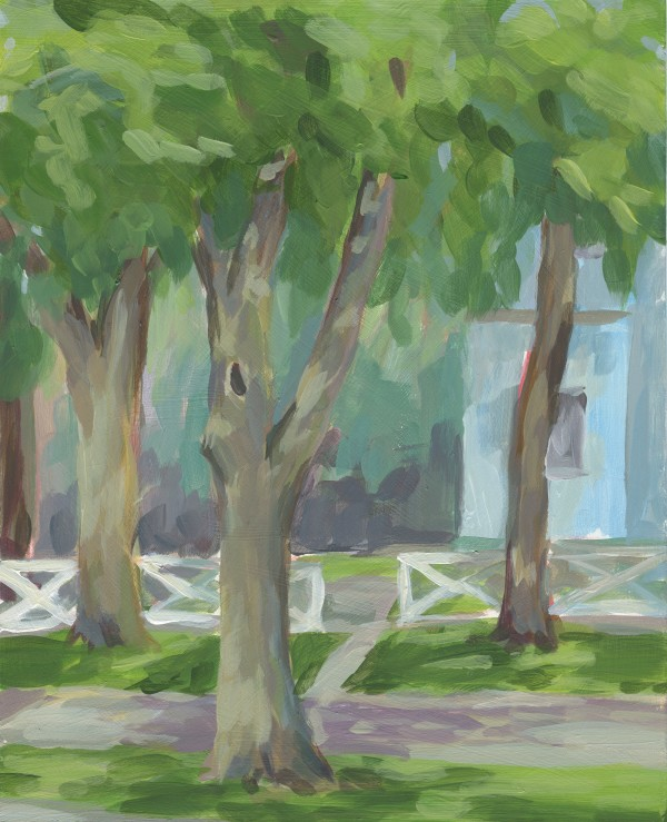 Backyard in August by Carrie Arnold