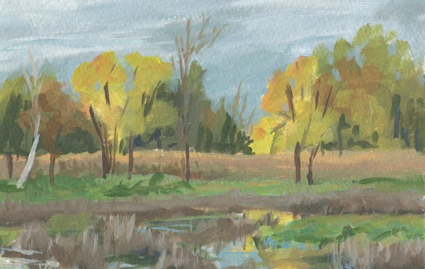 Tamarak Wetlands by Carrie Arnold