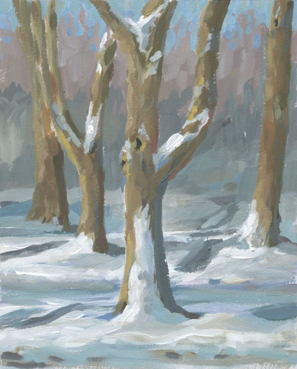 Snowy Trees by Carrie Arnold