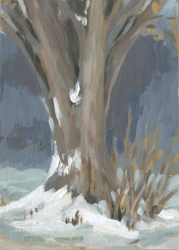 Silver Maple by Carrie Arnold
