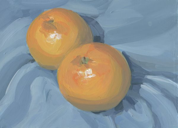 Grapefruits by Carrie Arnold