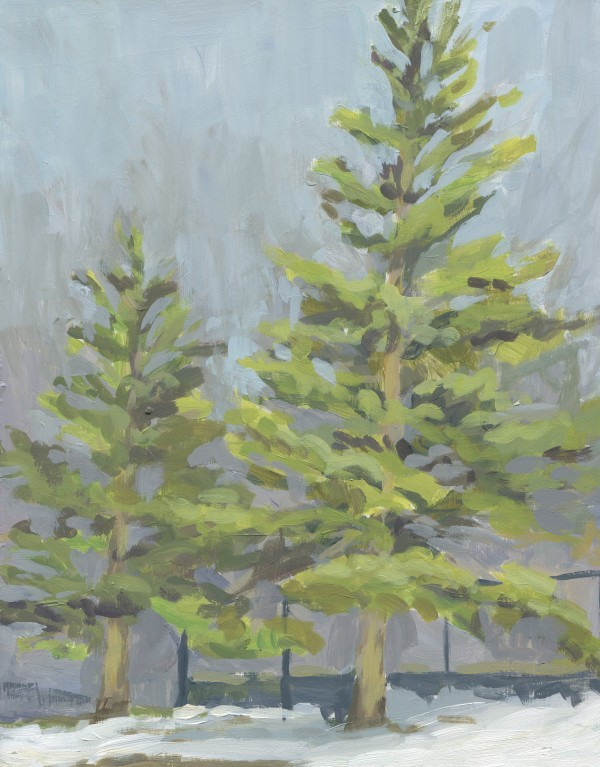Evergreen Trees Plein Air by Carrie Arnold