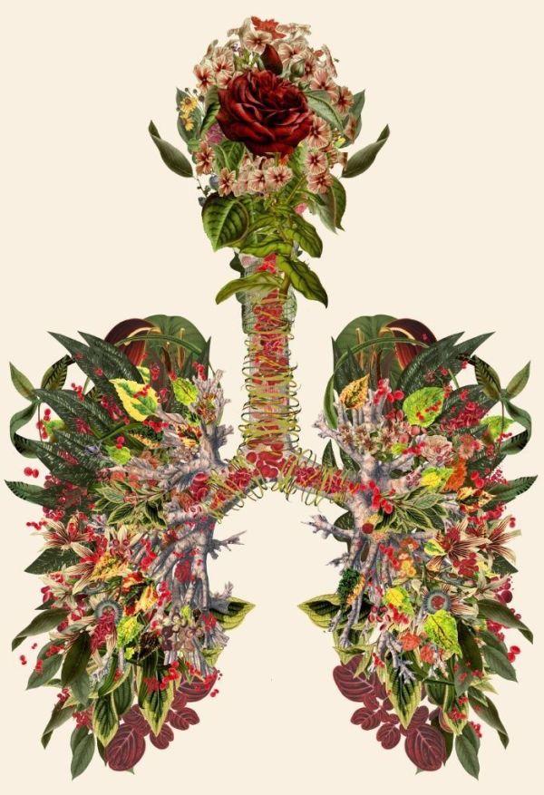 Just Breathe Remix by Travis Bedel
