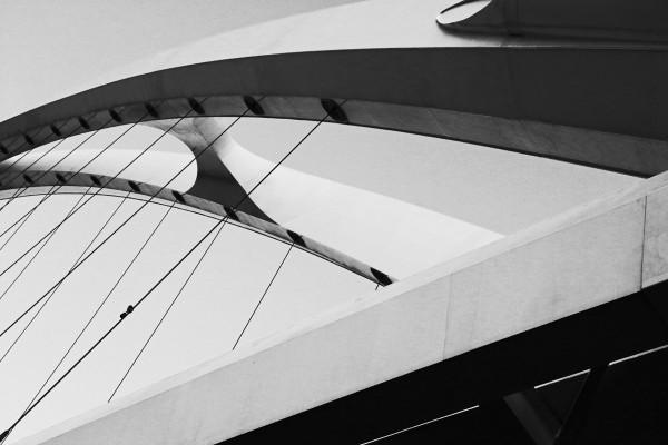 Bridge by Rick Perkins