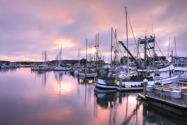 Sunset In The Harbor by Rick Perkins
