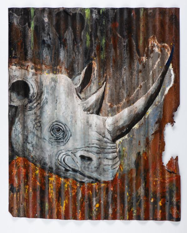 Animals Matter: Rhino