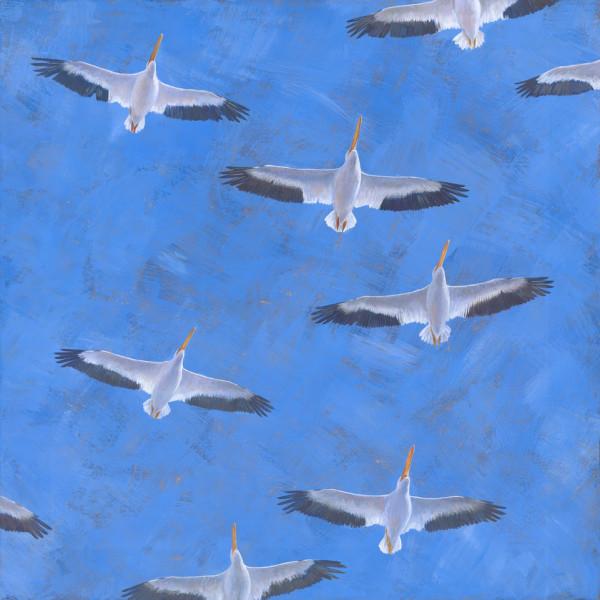 Gliding Under A Gilded Sky