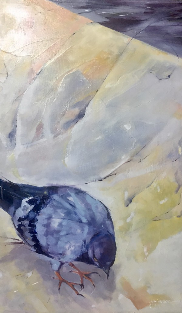 Pigeon On Edge by Judy McSween