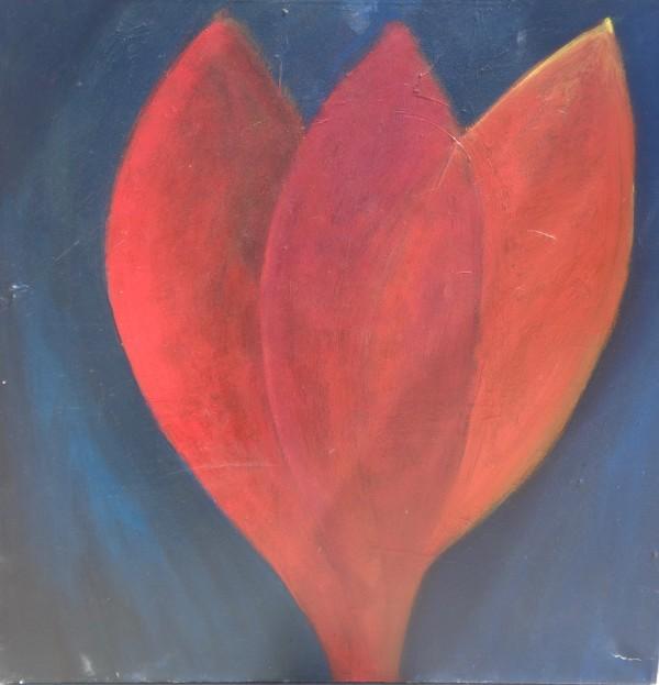 1150 Dark Red Plant  by Judy Gittelsohn