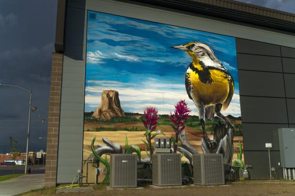 Meadowlark by Robin Munro (aka Dread)