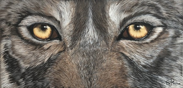 Rockwood Wolf by Stephanie Dopheide
