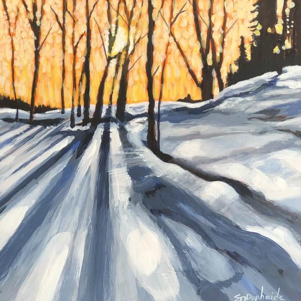 Sun Glow by Stevie J. Dopheide