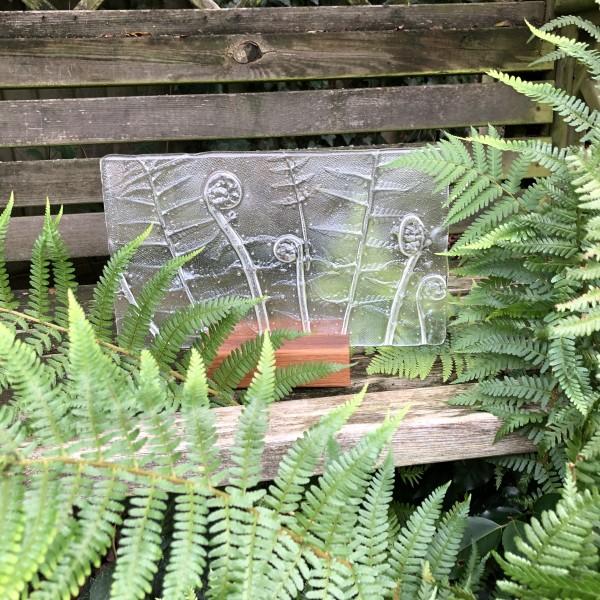 SHI309, Clear Ferns in oak block by Hilary Shields