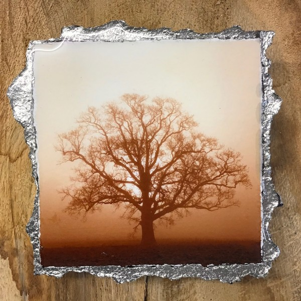 WEL152, Duotone Sunrise Silhouette Umber by Mark Welland