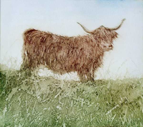LON191, Highland Lady by Claire Longley
