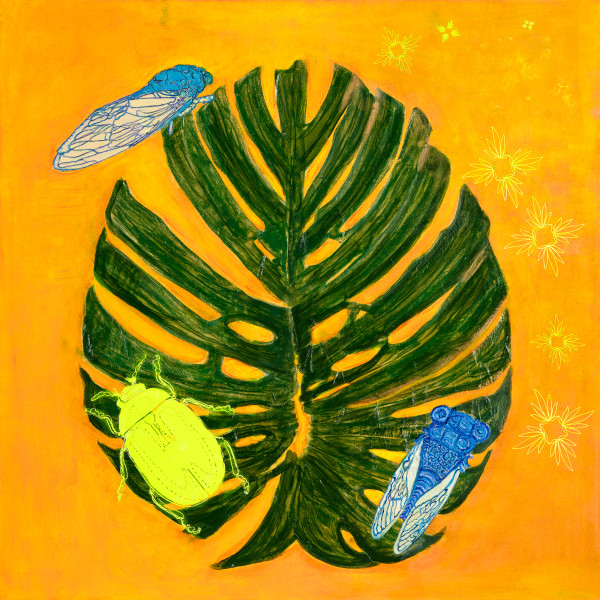 Cicadas and Junebug on Monstera with Status by Alexandra Anderson Bower