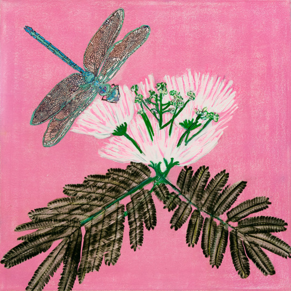 Dragonfly on Mimosa in Pink by Alexandra Anderson Bower