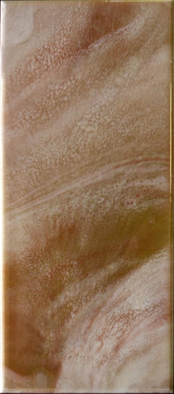 Sandstorm by Gayle Reichelt