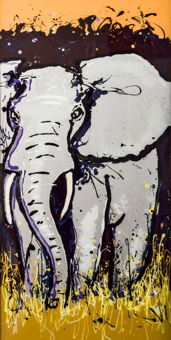 Elephant by GENE