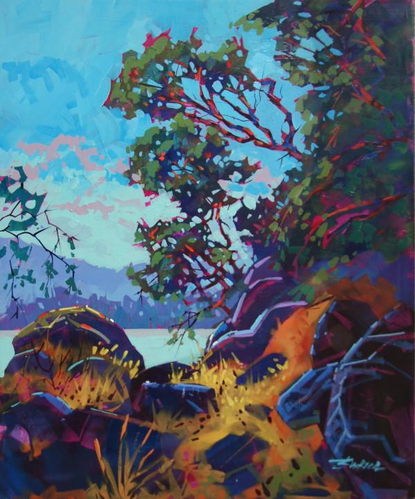 Gulf Island Shoreline Print  by Brian Buckrell